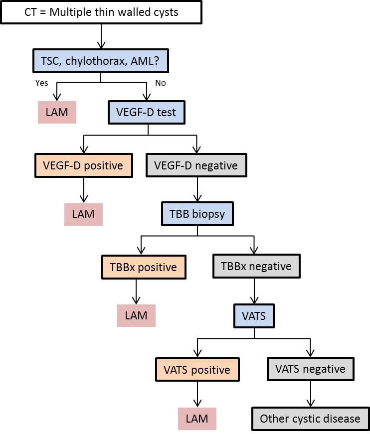 Diagnostic_Algorithm_for_Lymphangioleiomyomatosis