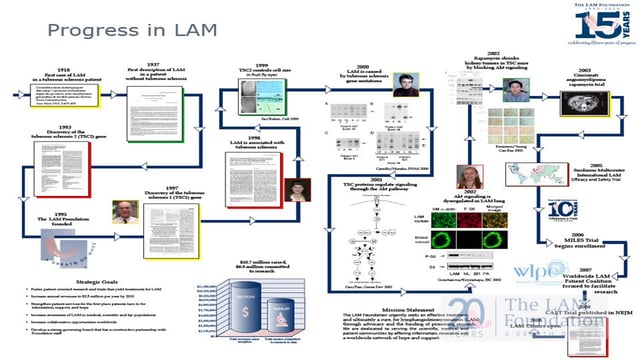 Twenty Years of Progress in LAM- What's Next?